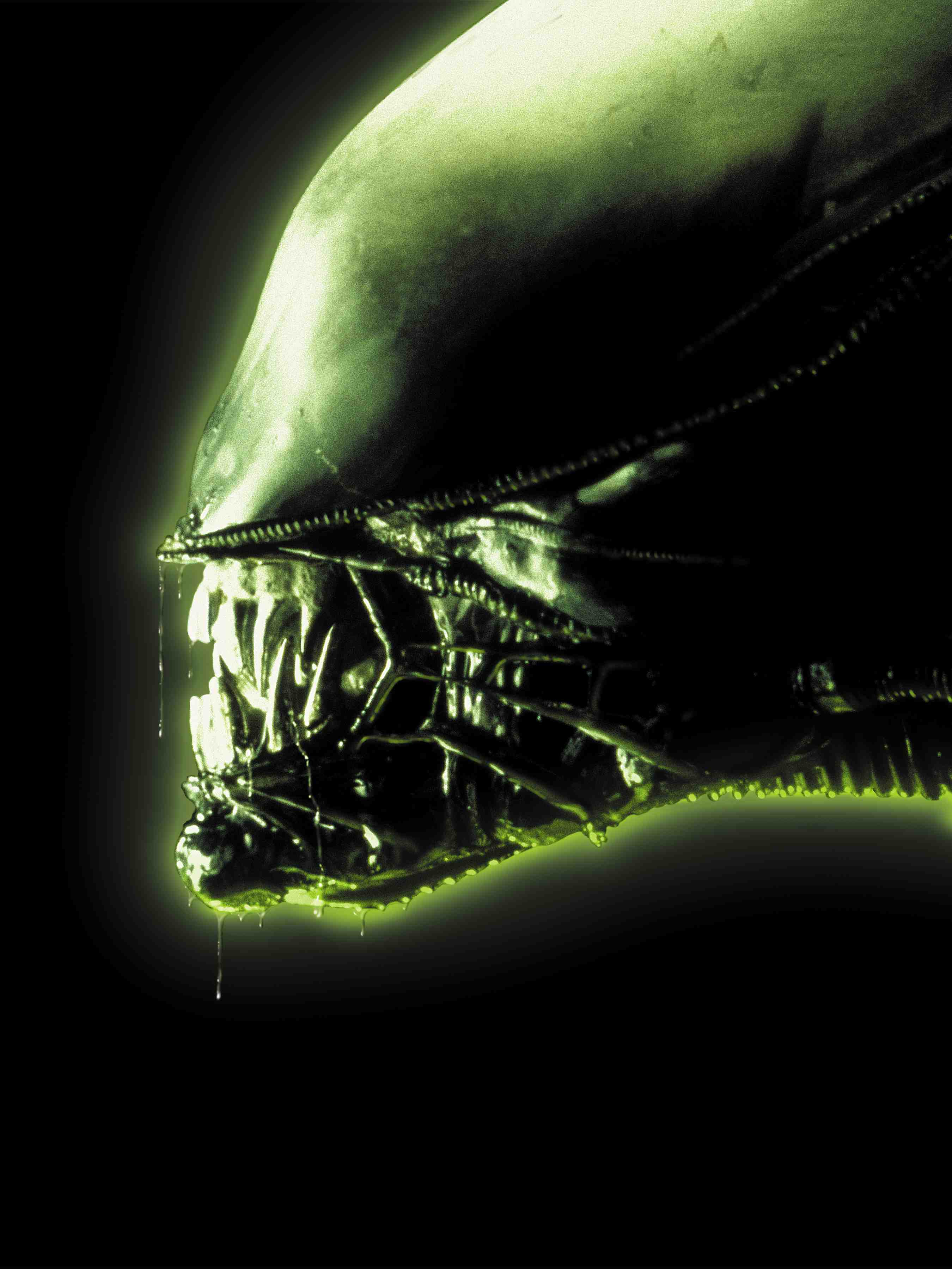 Index of /images/uploads/screenshots/x360/aliens-colonial-marines